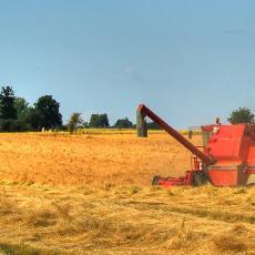 agriculture01-.jpg
